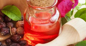 5346_10-Amazing-Benefits-Of-Rose-Hip-Oil