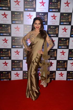 Star Screen Awards 2017 _ stylegods