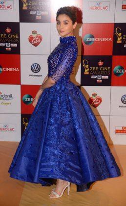 Zee Cine Awards 2017 _ style gods