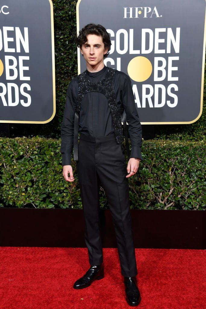 timothee-chalamet-attends-the-76th-annual-golden-globe-news-photo-1078338300-1546825659
